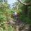 石川県白山はこうやって登る!初心者用白山登山ガイド。(登山道写真多数)